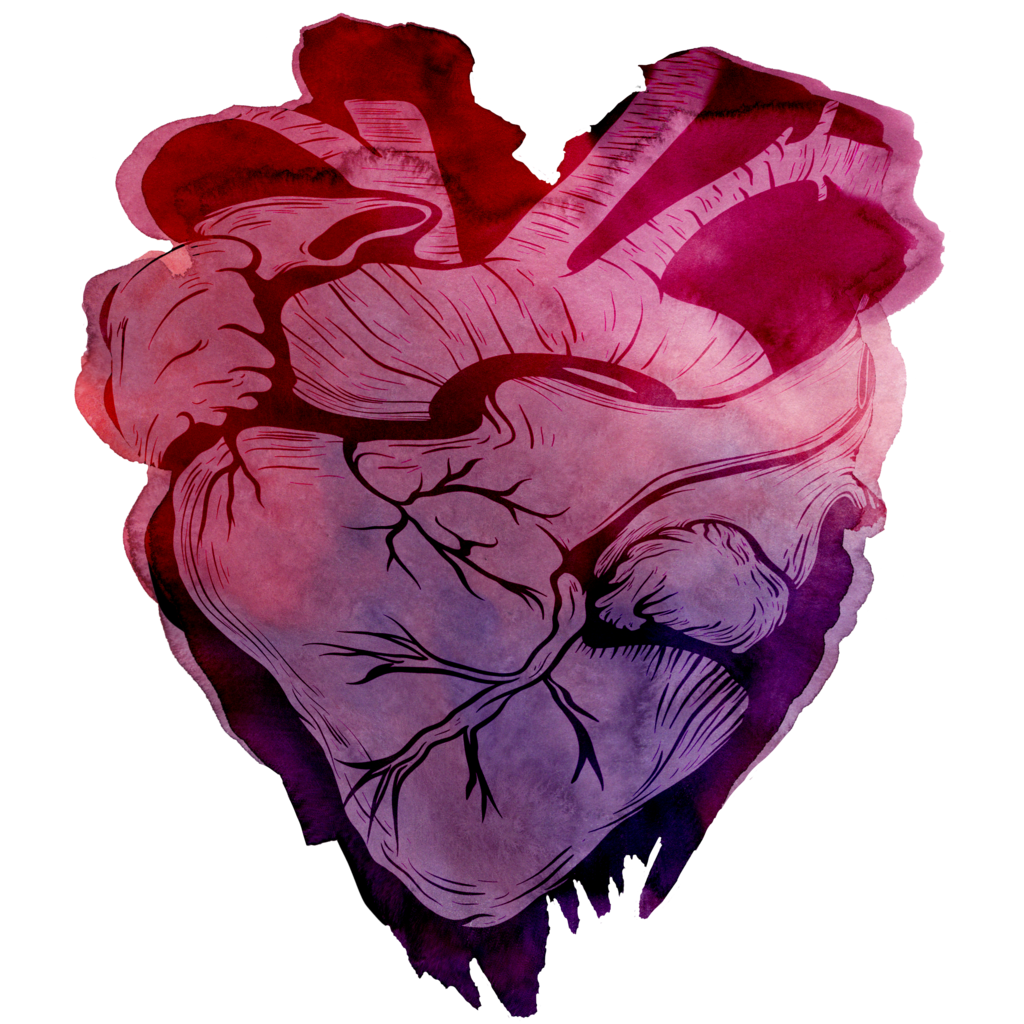 Heart watercolor png. By aewin on deviantart