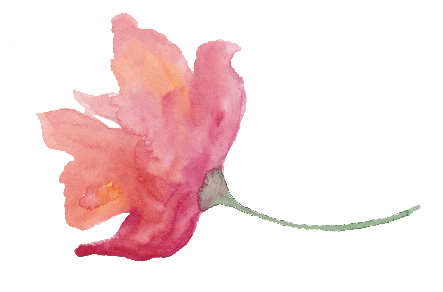 Water color texture png. Free watercolor floral with