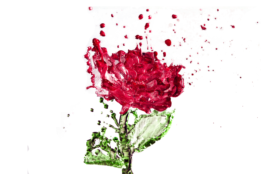 Water flower png. Distilled rose drop creative