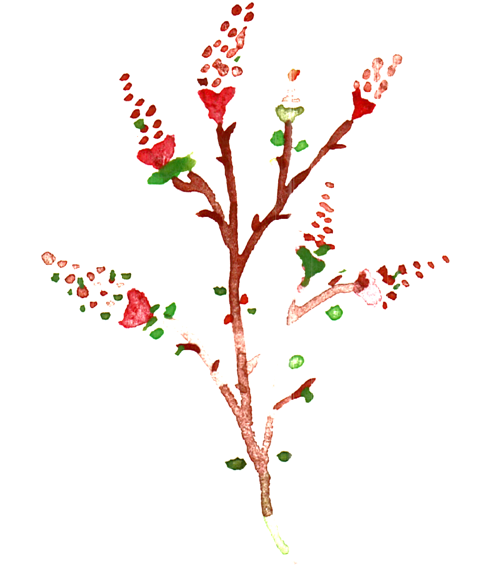 Watercolor branch png. Download hd transparent ornamental