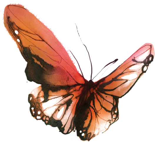 Watercolor butterfly png. Download sunset tattly temporary