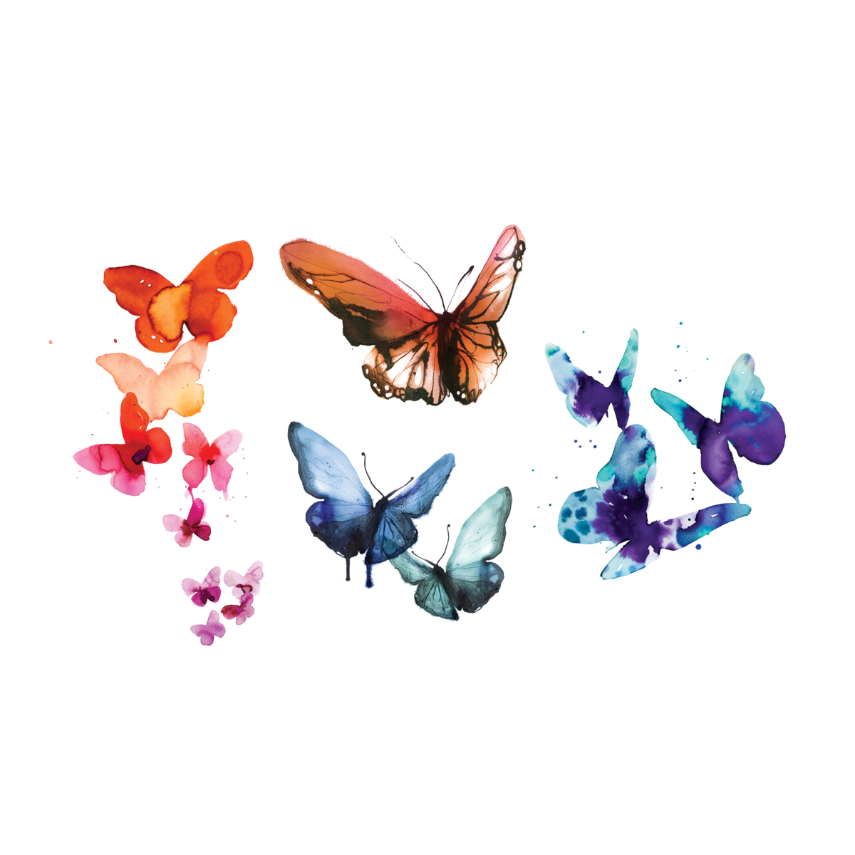 Watercolor butterfly png. Butterflies set by stina