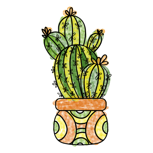 Watercolor cactus png. Hand drawn plant pot