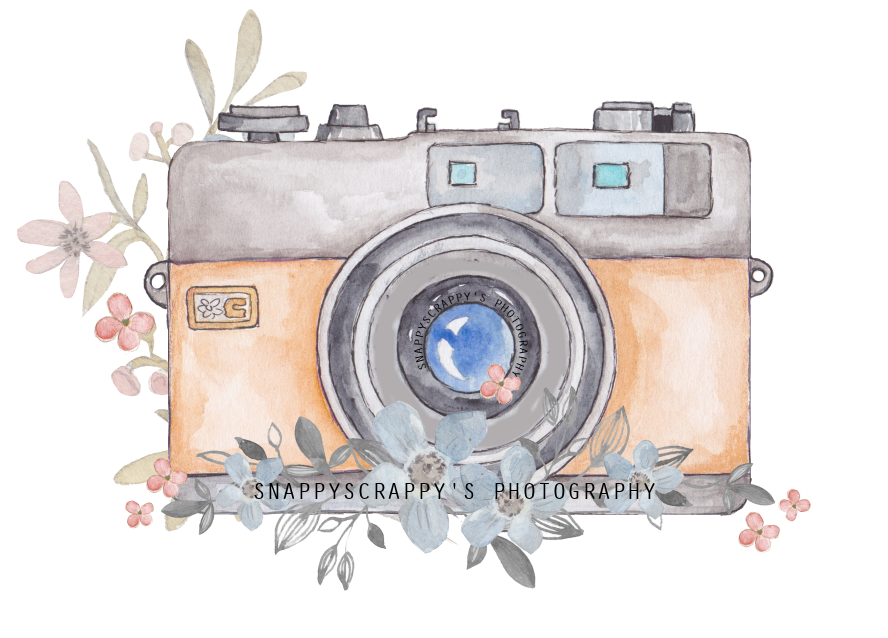 Watercolor camera png. Painting photography transprent free
