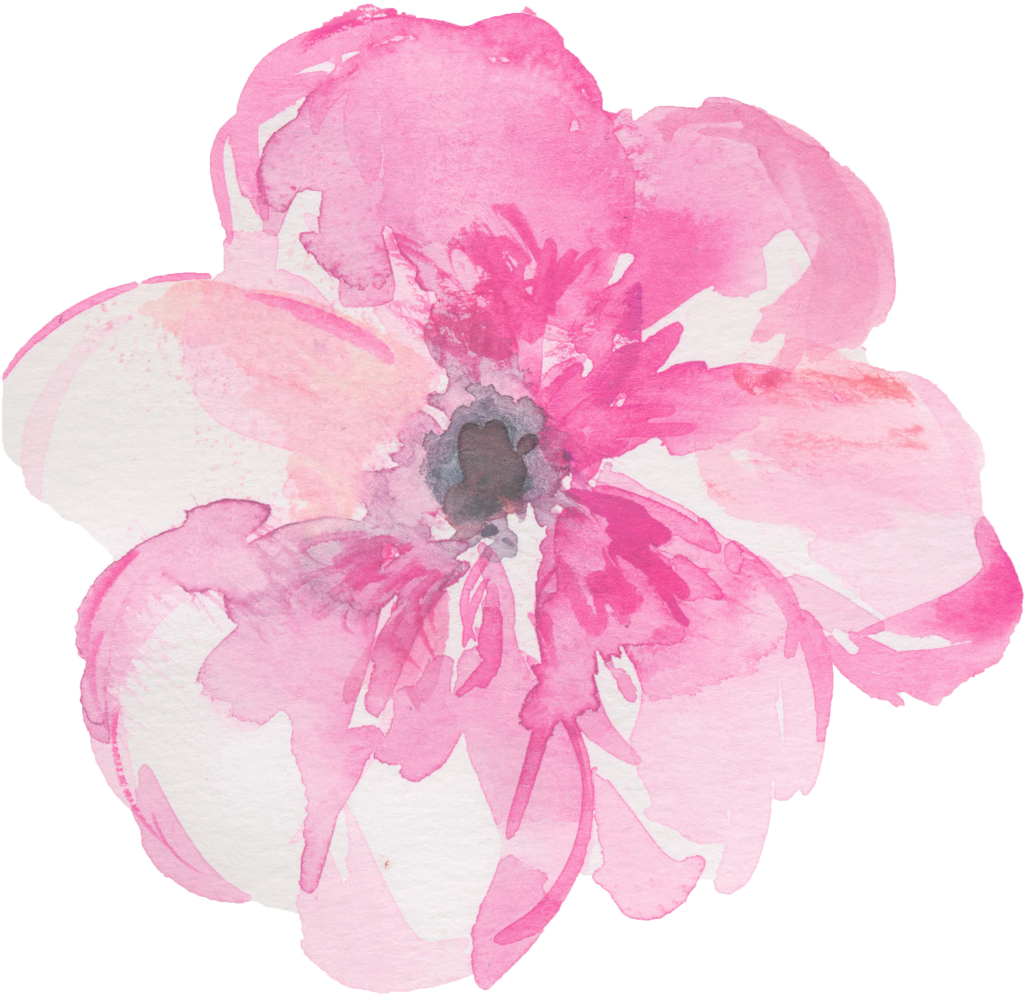 Watercolor clipart png. Watercolour flowers painting clip