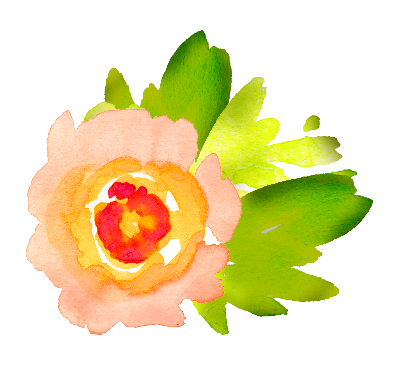 Flower png watercolor. Free floral elements pretty