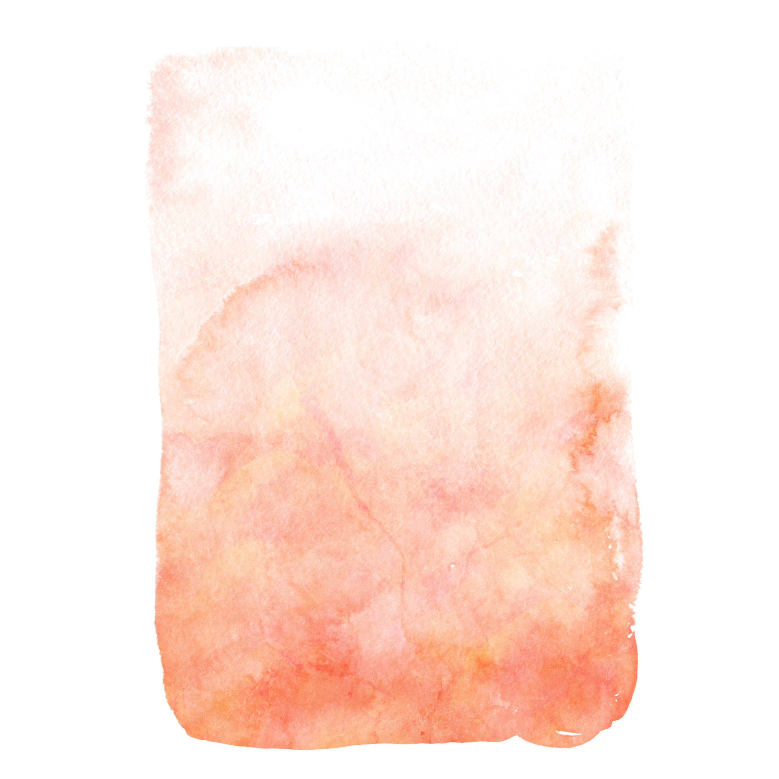 Watercolor coral png. Orange free brush stroke