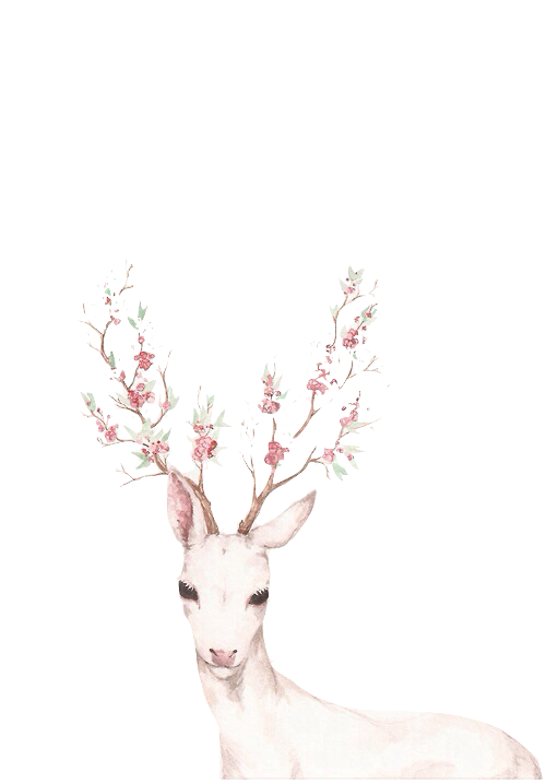 Watercolor deer antlers png. Let me tell you