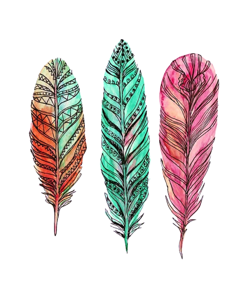 Watercolor feathers png. Tumblr mmx bxjp sr