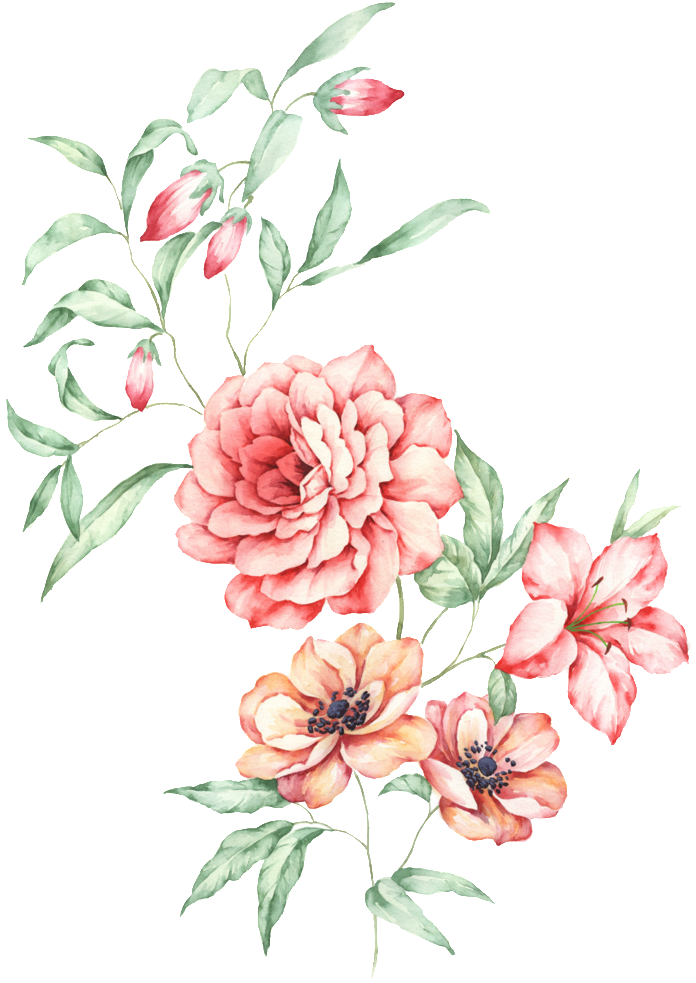 Watercolor floral bouquet png. Download this graphics is