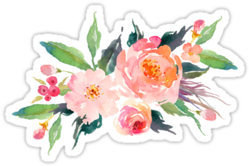 Watercolor floral bouquet png. Download picture free flower