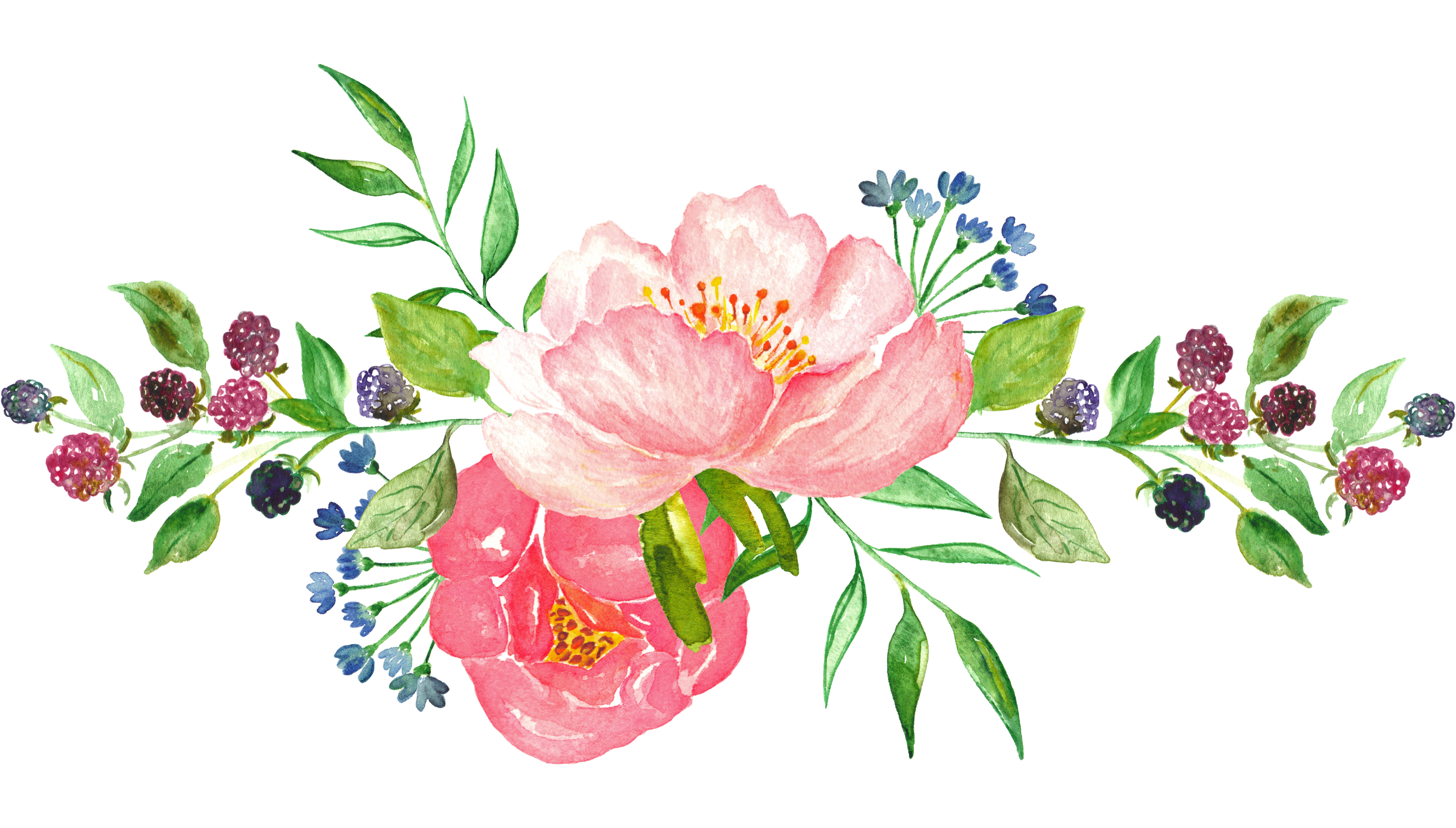 Pink water color flower png. Watercolor flowers transprent free