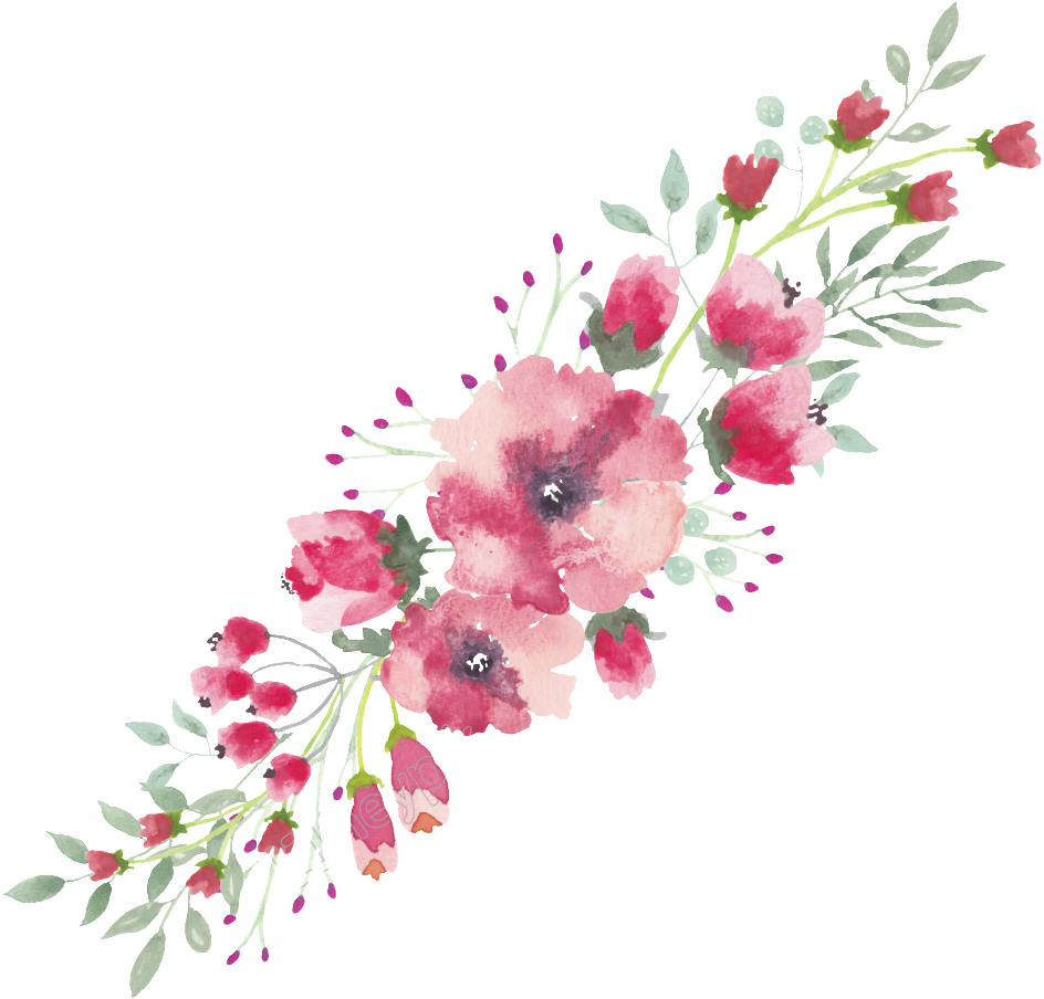 Watercolor flowers border png. Flower free full x