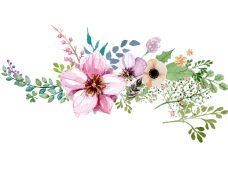Watercolor flower border png. Flowers vector clipart psd