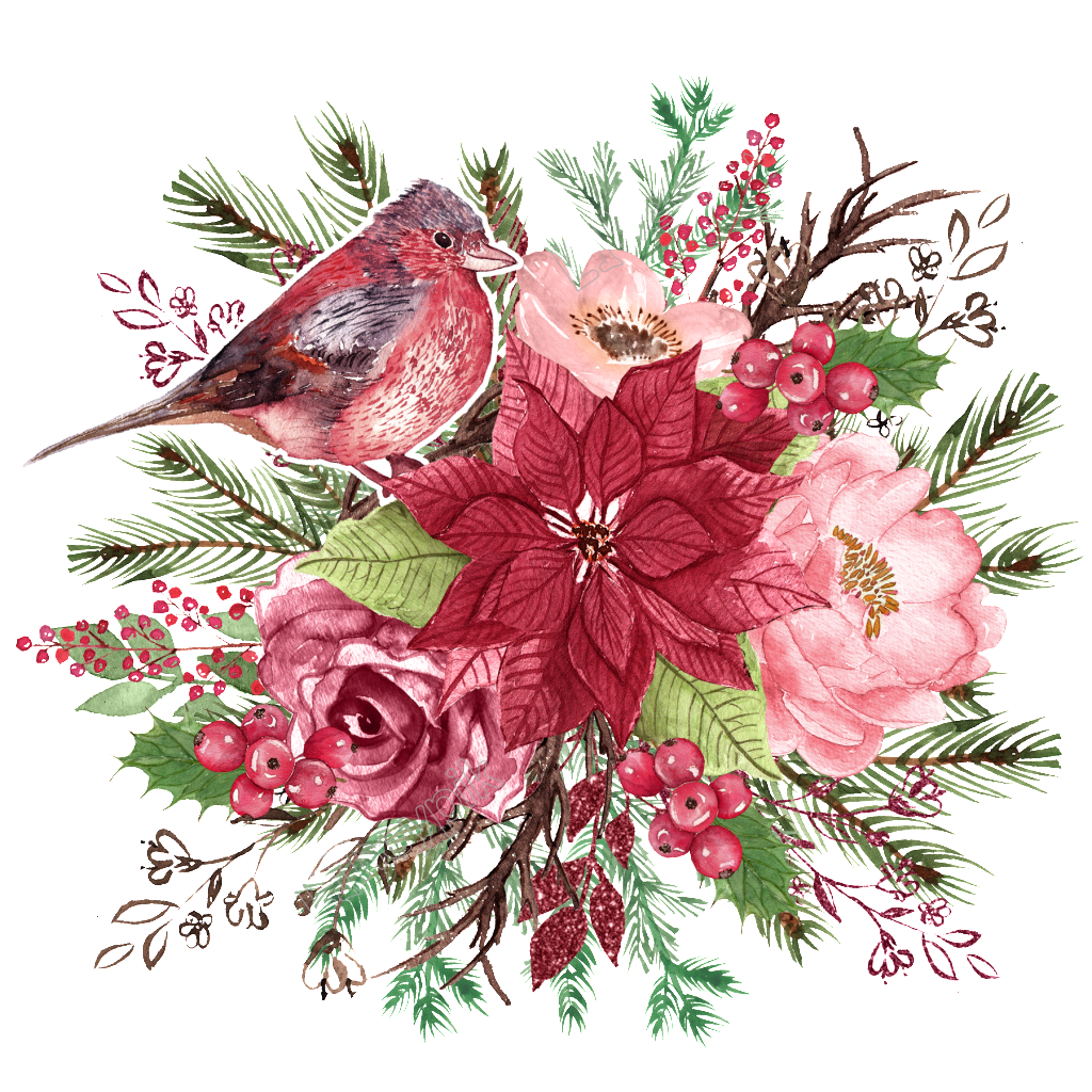 Watercolor flowers borders elements ornaments png free. Bird flower download vector