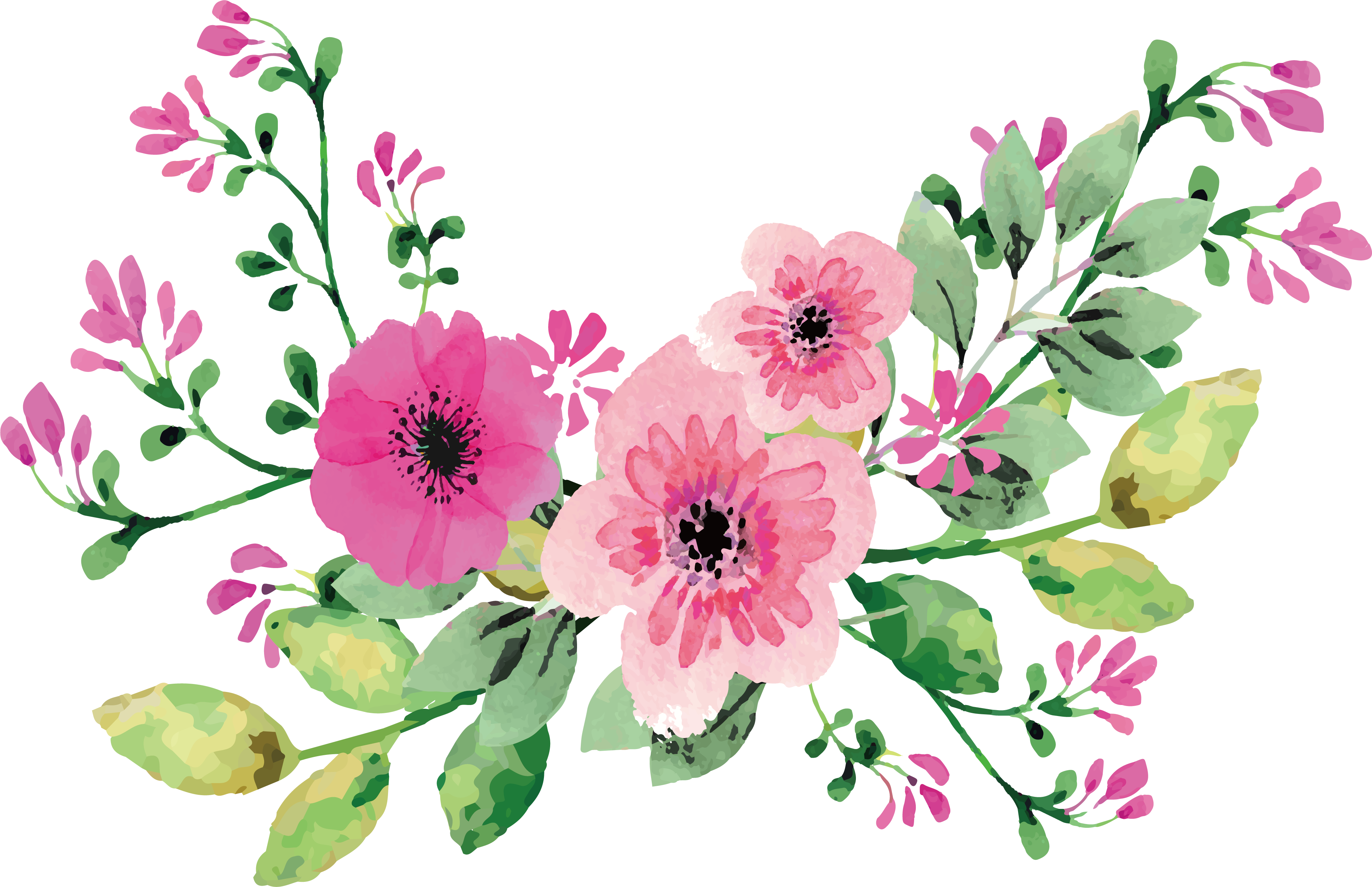 Watercolor flowers png free. Romantic transprent download pink