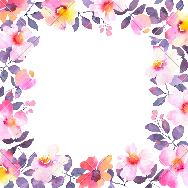 Watercolor frame png. Modern flower square background
