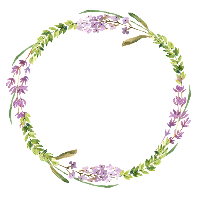 Watercolor lavender png. Wild flowers and wreath