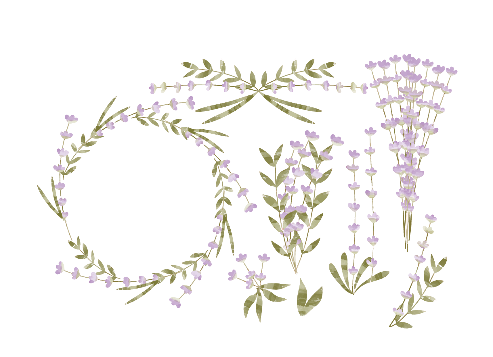 Watercolor lavender png. Flower euclidean vector painting