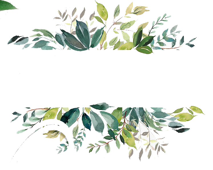 Watercolor leaves png. Free banner peoplepng com