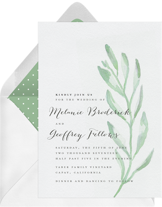 Watercolor olive branch png. Invitations in green greenvelope