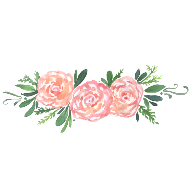 Watercolor peonies png. Peony floral and psd