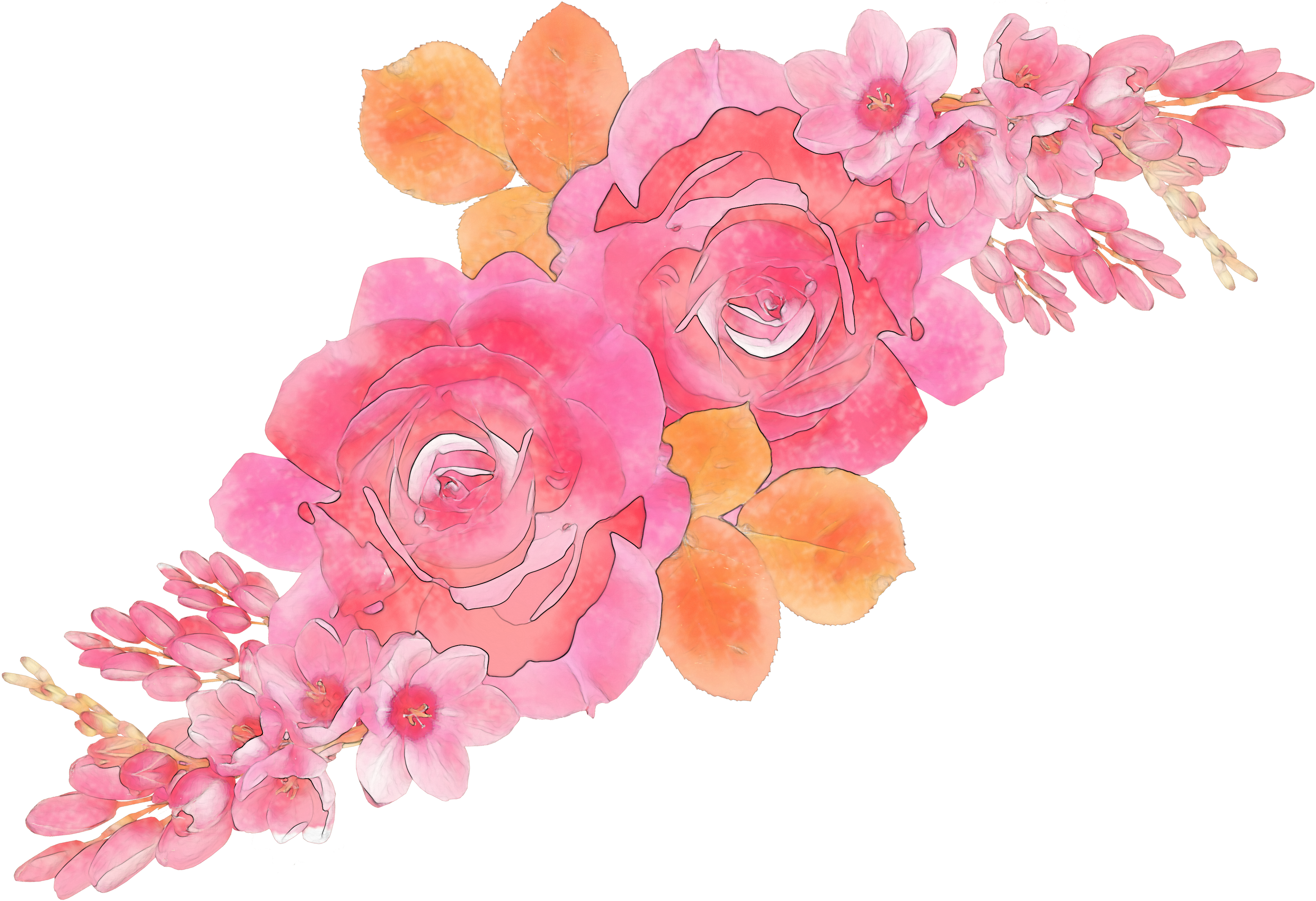 Watercolor roses png. Download hd flower pattern
