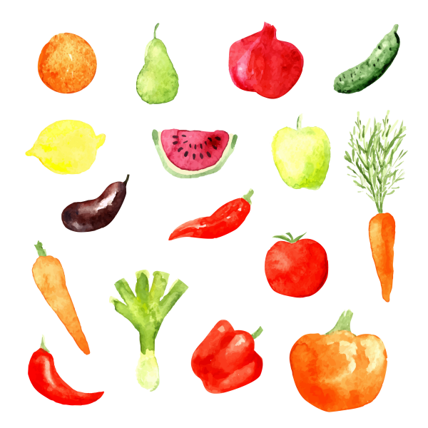 Watercolor set of fruit and vegetable icons. Vector illustration aubergine
