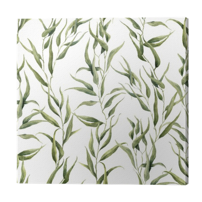 Watercolor silver leaf eucalyptus branch png free. Green floral seamless pattern