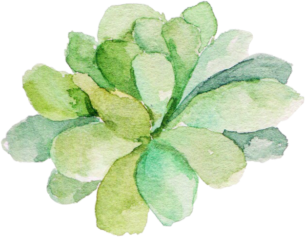 Watercolor succulent png. Here s another one