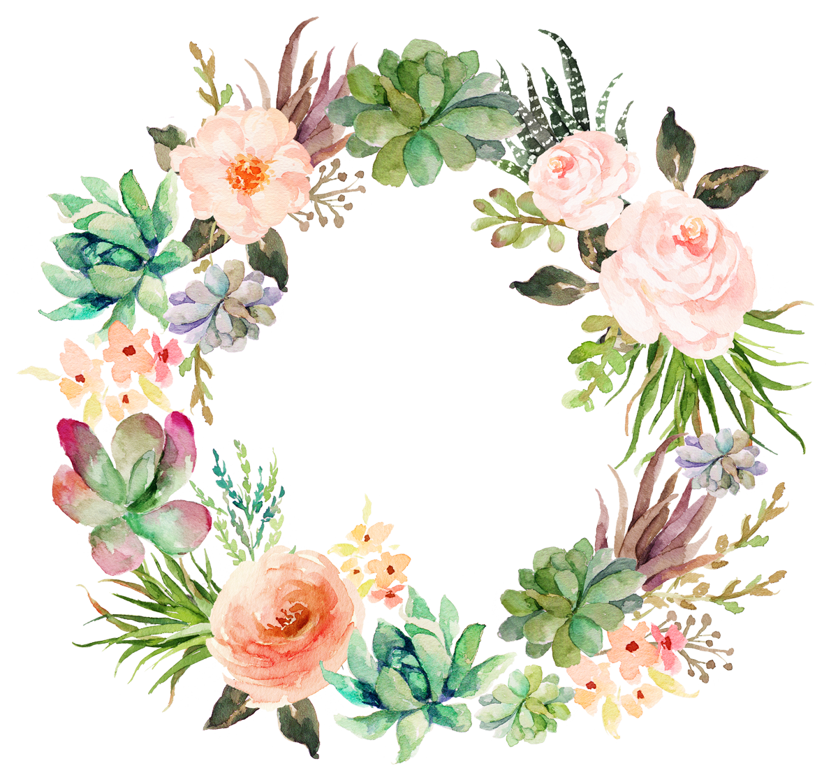 Watercolor succulent png. Wedding invitation paper painting
