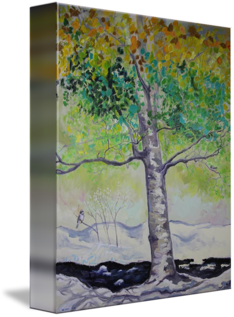 Waterfalls drawing colour pencil. Summer fall winter spring