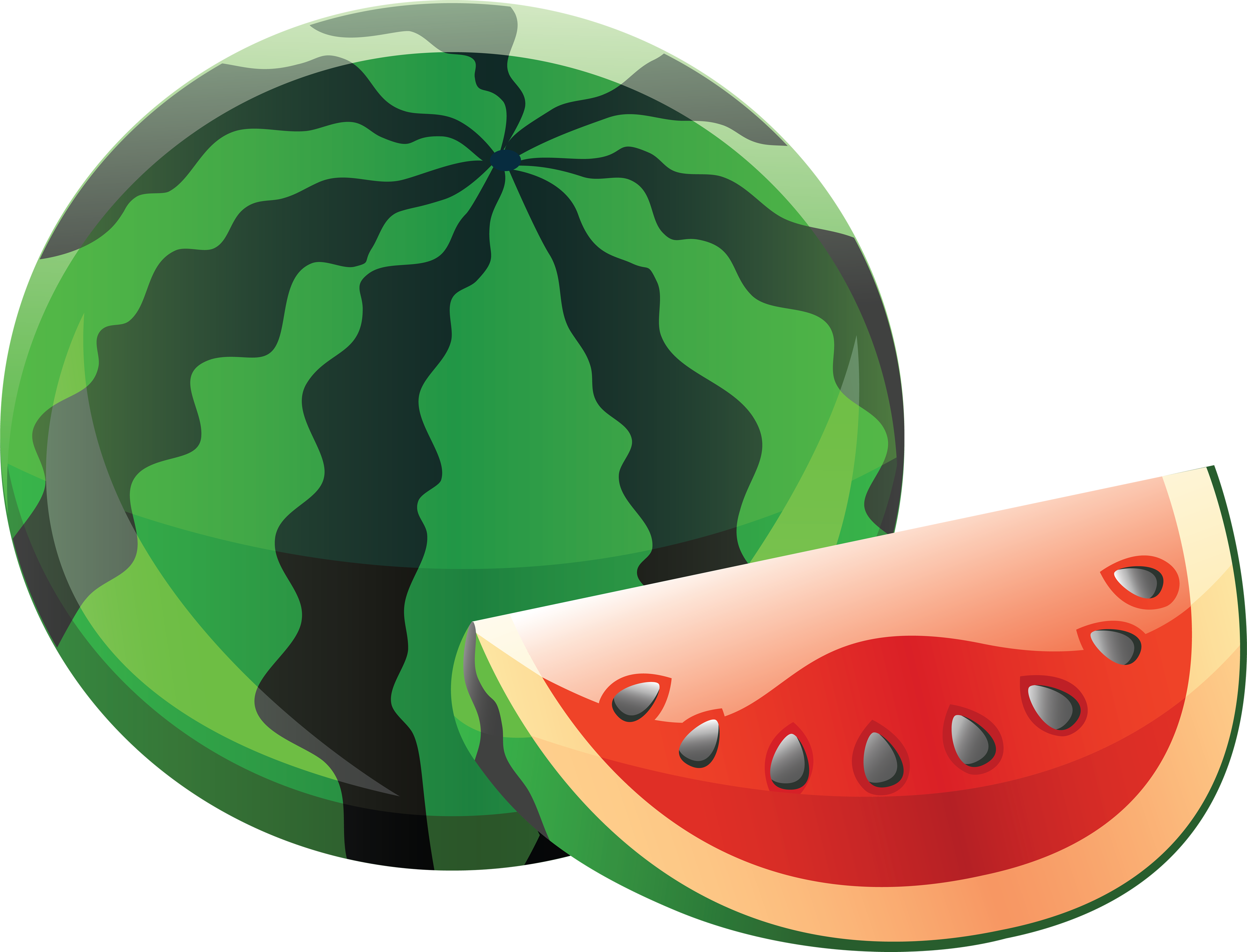 watermelon clipart watermelon vine