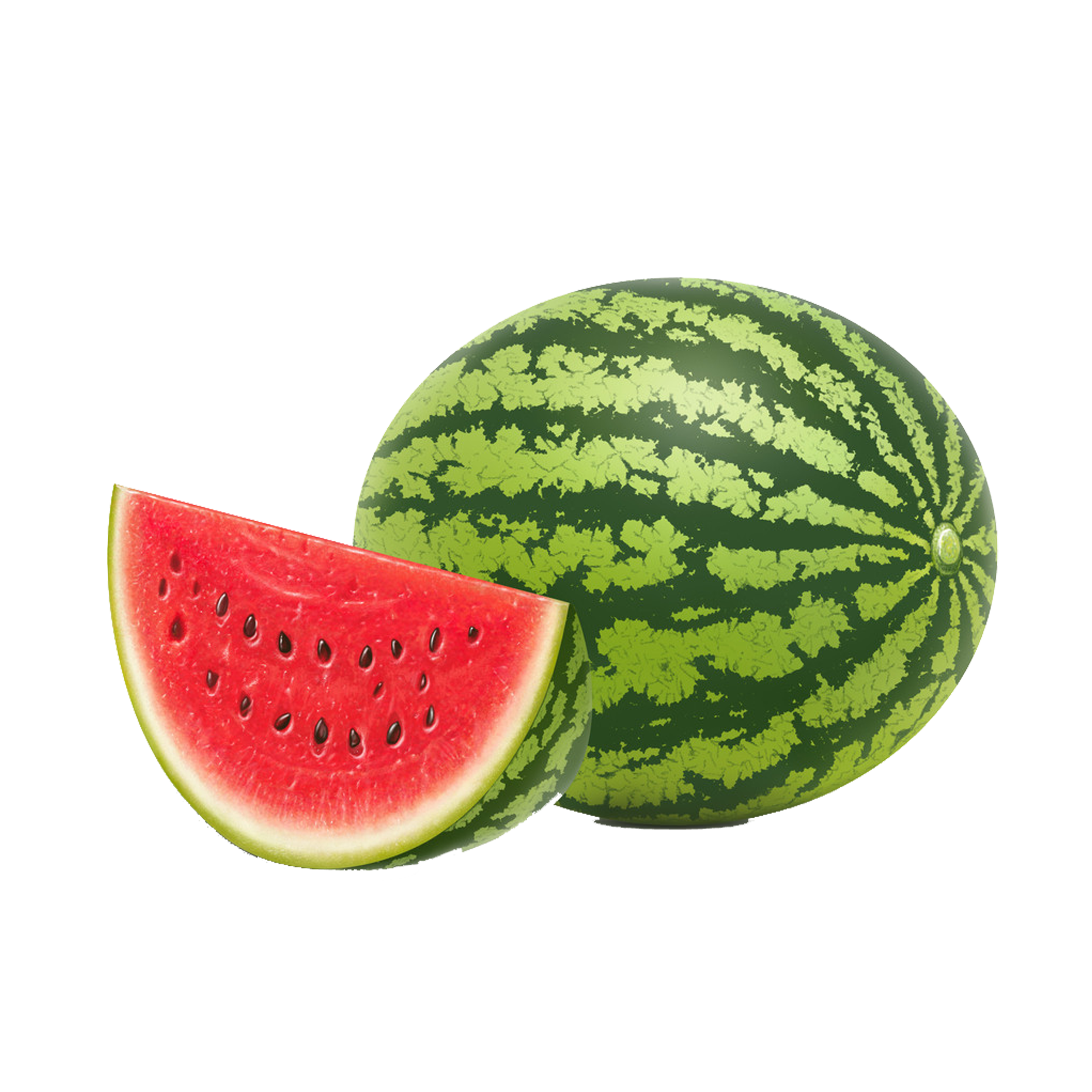 Watermelon seeds png. Seed fruit vegetable transprent