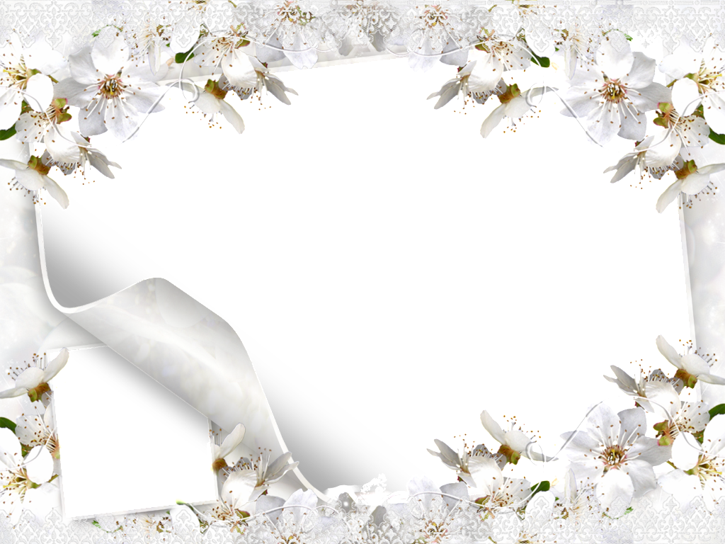 Wedding background png. Free backgrounds frames http