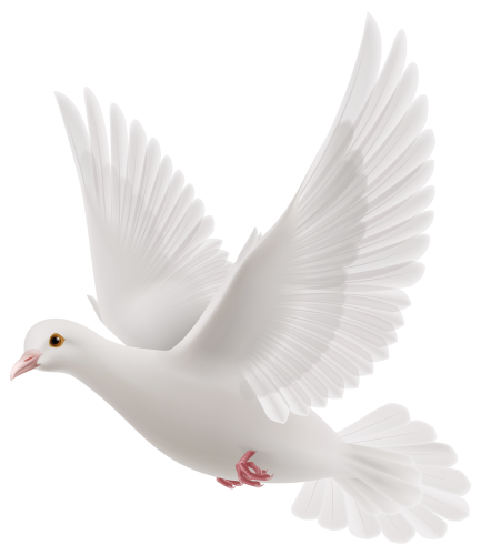 funeral doves png