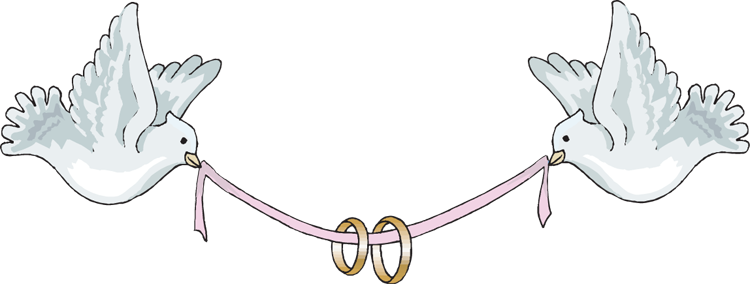 Wedding doves with rings png. Ribbon creates pinterest clip