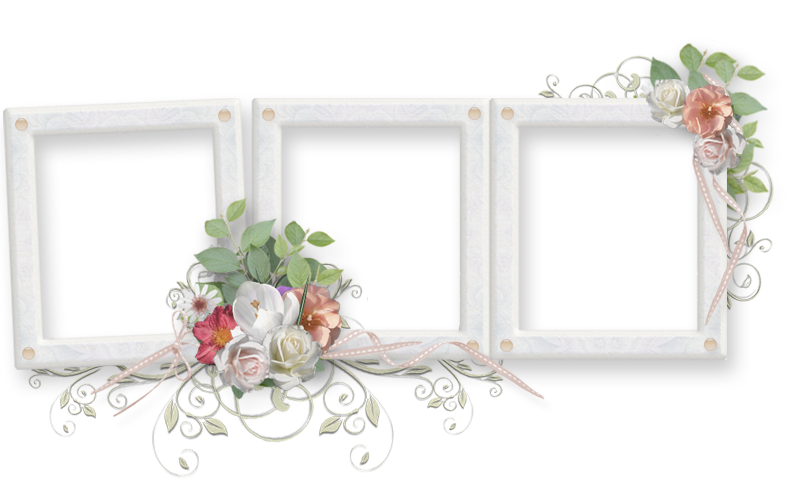 Wedding frames png free download. Graphics for wwwgraphicsbuzz photo
