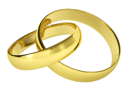 Wedding Rings Without Background Transparent Png Clipart Free