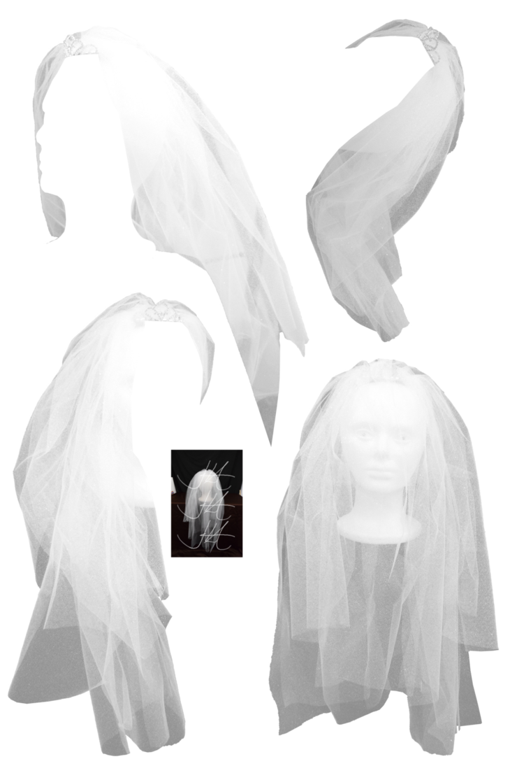 Wedding veil png. Bridal stock by mom