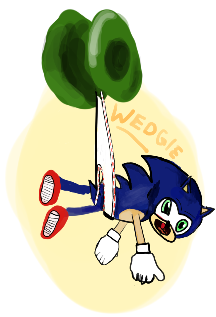 Wedgie drawing fox. Sonic the jojo by