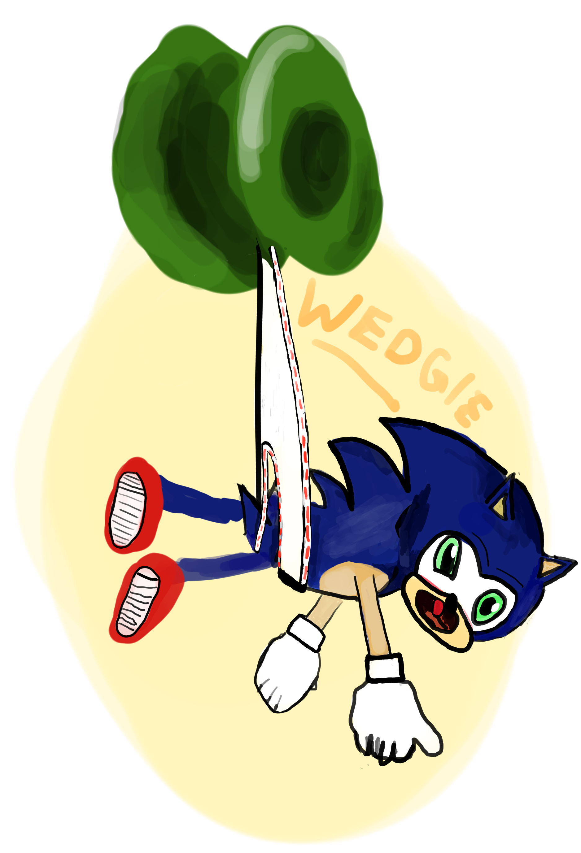 Wedgie drawing flying. Sonic the jojo by