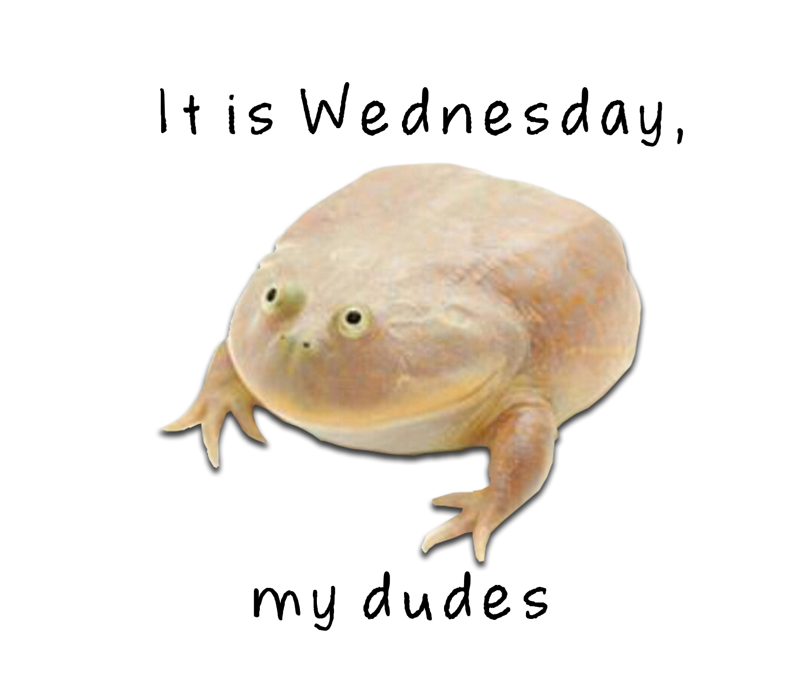 I am a. Wednesday frog png png library download