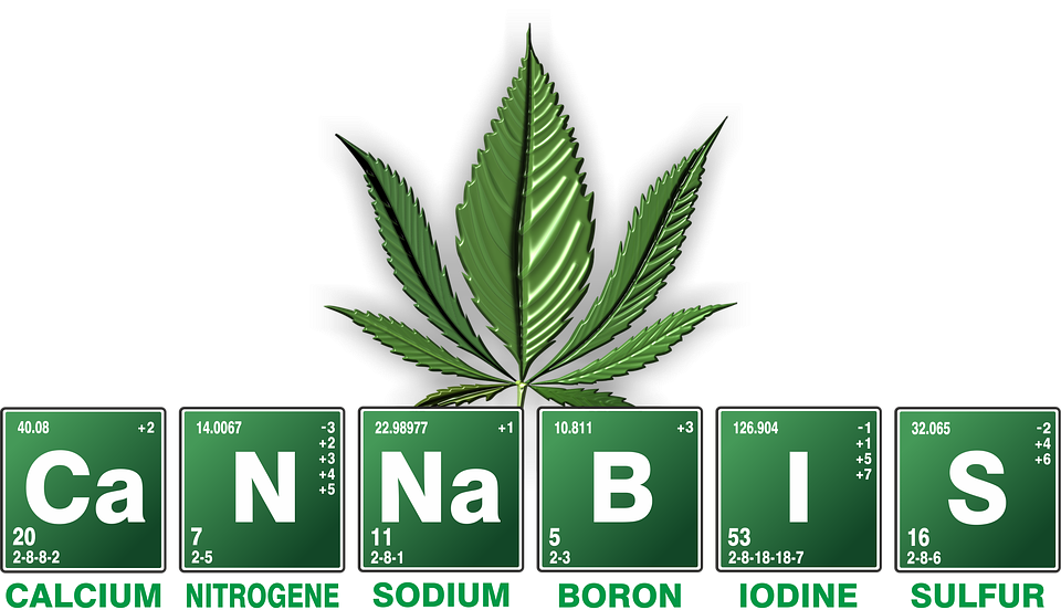 Pile of weed png. Transparent images in collection