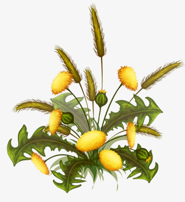 Flowering weed bloom png. Weeds clipart picture freeuse