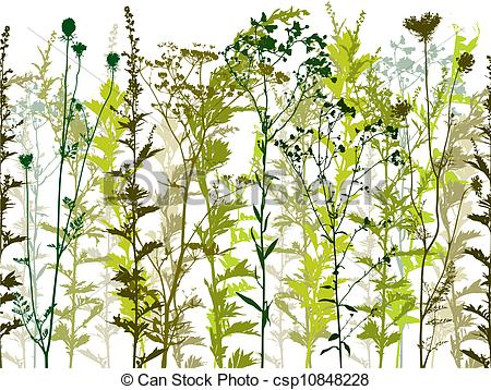 Weeds clipart. Natural wild plants and graphic free stock