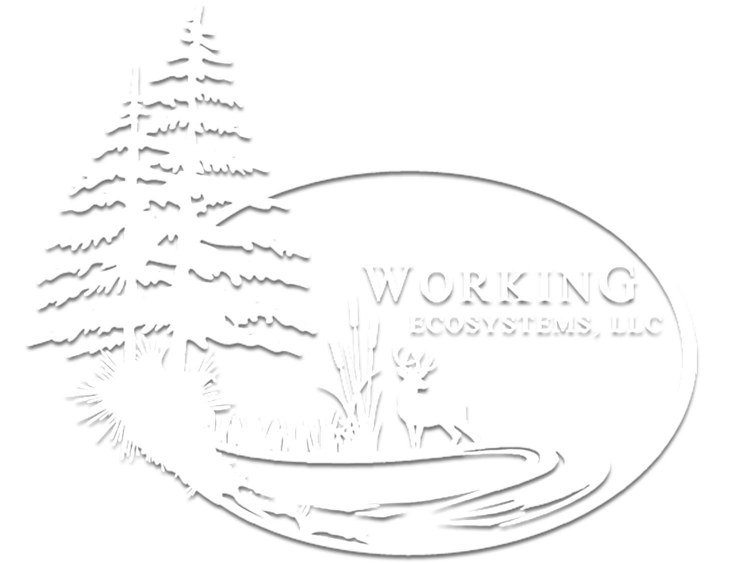 Weeds drawing money. Noxious working ecosystems llc