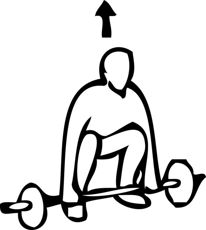 Squat vector olympic barbell. Exercise weight training fitness