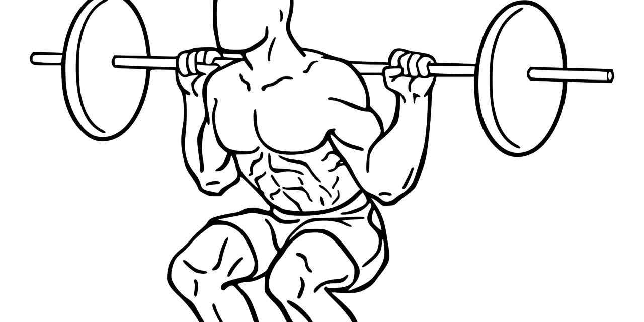 Weightlifter drawing easy. The squat no brain