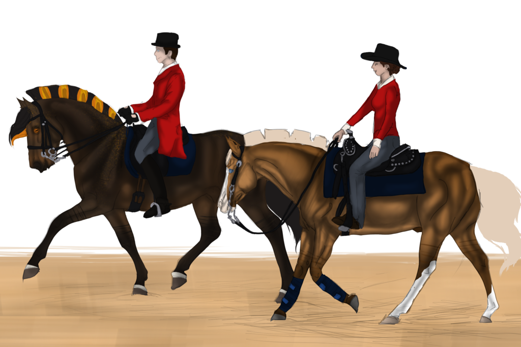 Western drawing horse riding. Vs english collab by